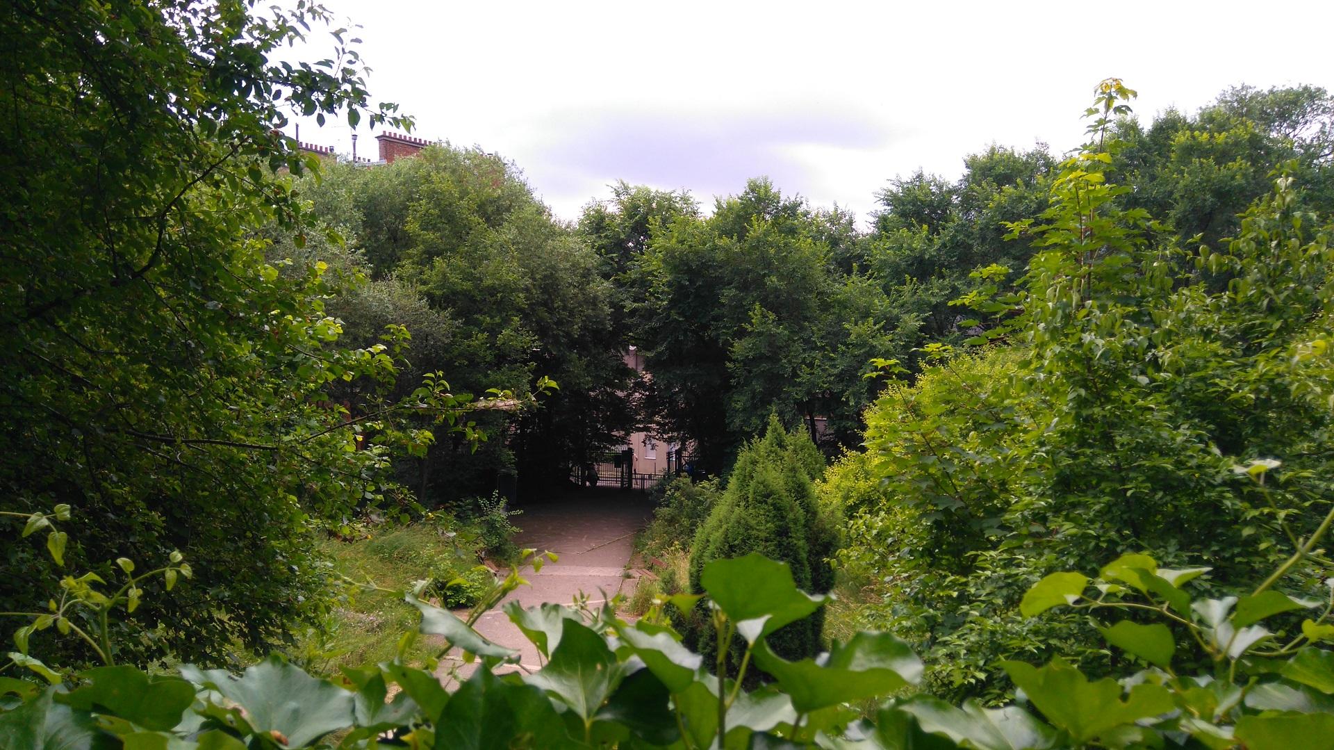 Paris d couvrez le jardin naturel dans le xxe la for Jardin jardin 2017